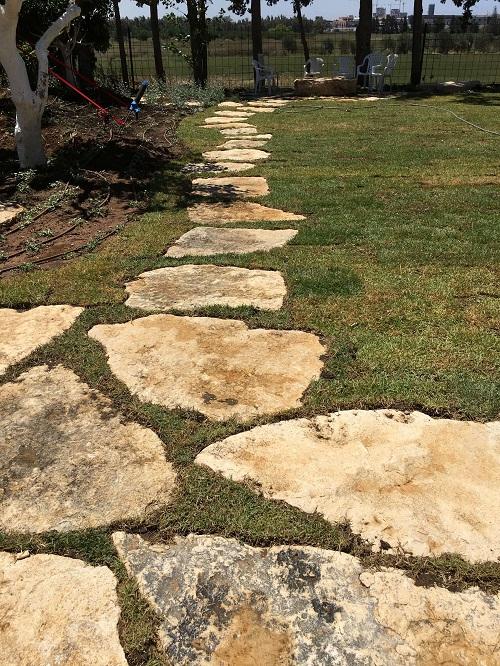 אבן פסיעה פראית - הטמעה בתוך דשא
